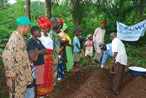 Improving Yam Production in Nigeria